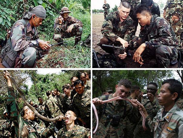 Совместные военные учения Cobra Gold 2010, 1- 11 февраля 2010 года, Районг, Таиланд.
