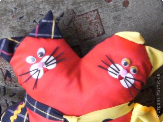 Влюбленные коты (МК). 54939034_DSCF1124