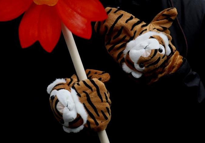 Так отмечают китайский лунный Новый год Тигра.