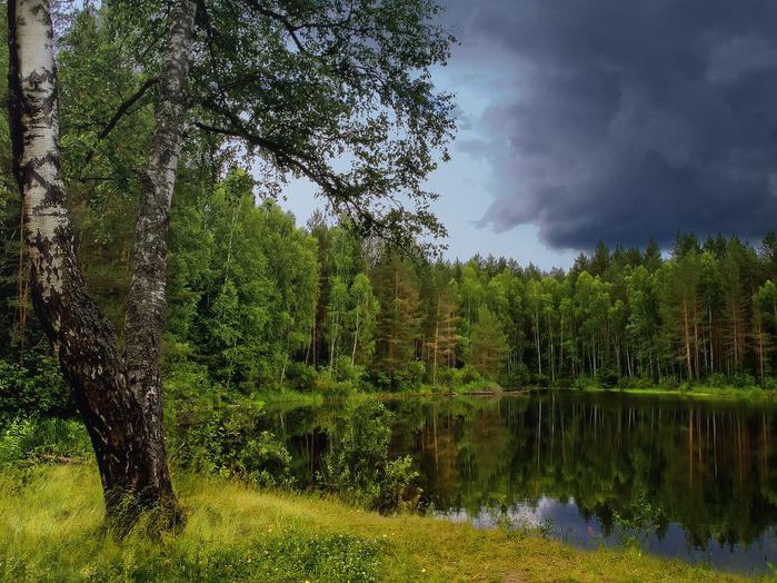 Загадка Локнянской поляны