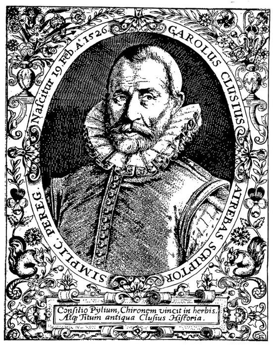 Карл Клузиус