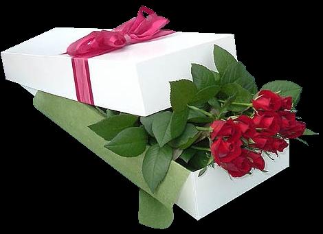 http://img1.liveinternet.ru/images/attach/c/1//55/474/55474683_28b7dafe1e38.png