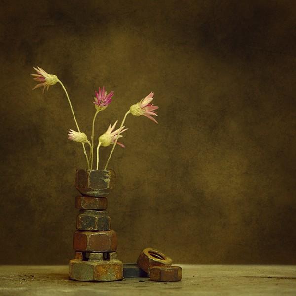 Фотонатюрморты George Rustchev
