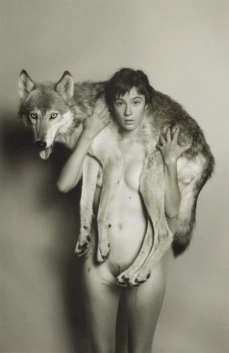 Волчье ню - волк ее все-таки подрал