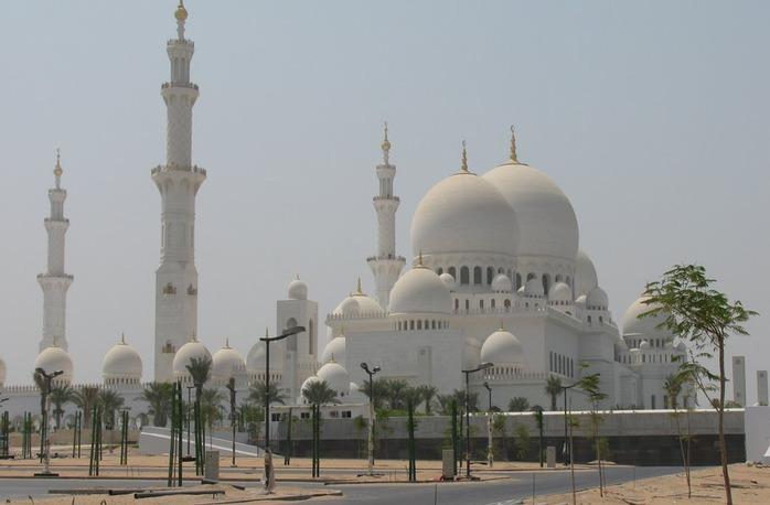 Мечеть Шейха Заида Бин Султана Аль Нахьяна - Sheikh Zayed bin Sultan Al Nahyan Mosque 41223