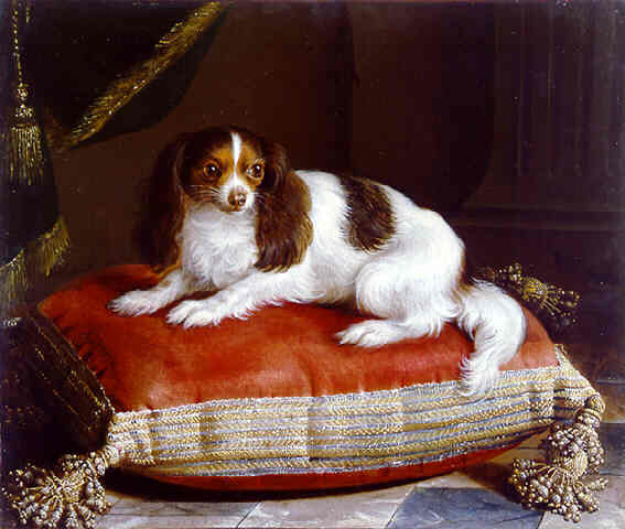 Painting of a dog cushion and spaniel at the court of Philippe V of Spain, grandson of Louis XIV