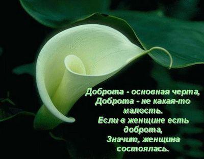 http://img1.liveinternet.ru/images/attach/c/1//56/287/56287139_56154238_1268003218_5359668_3016_b.jpg