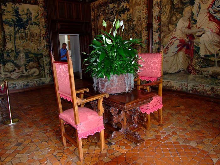ЗАМОК ШЕНОНСО (Chateau de Chenonceau) 77171
