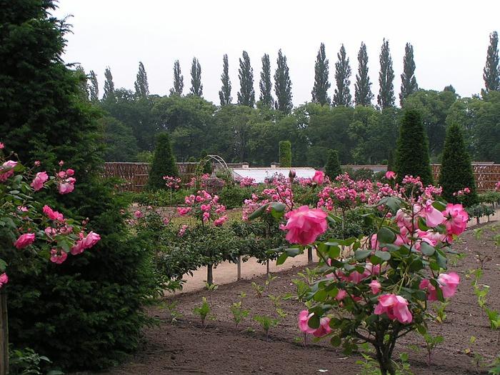 ЗАМОК ШЕНОНСО (Chateau de Chenonceau) 37233