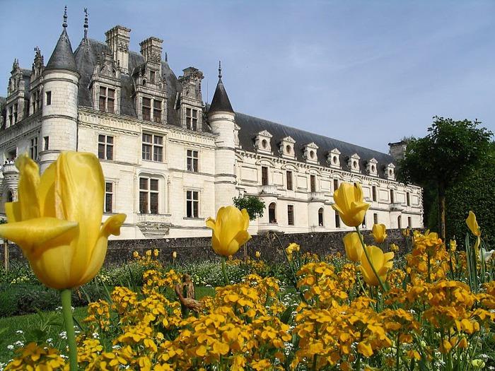 ЗАМОК ШЕНОНСО (Chateau de Chenonceau) 36109