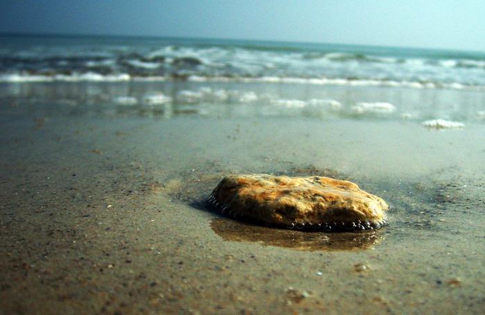 море одесса камень