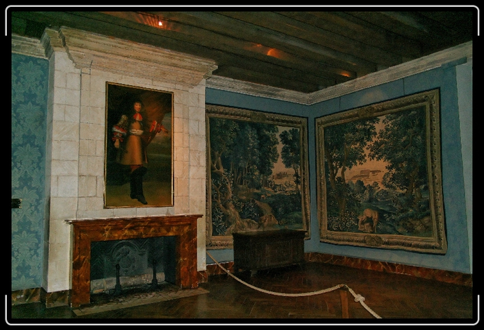 Замок Азе-ле-Ридо-Chateau D'Azay le Rideau 67134