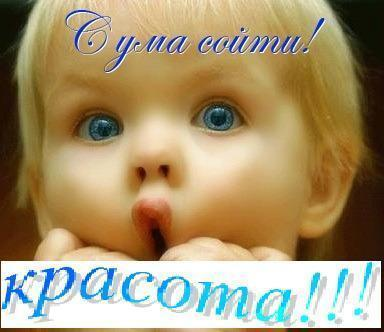 55495989_S_uma_soyti_Krasota (384x332, 20 Kb)