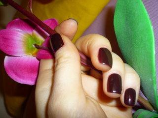 мои ногти с лаком мал (320x240, 48 Kb)