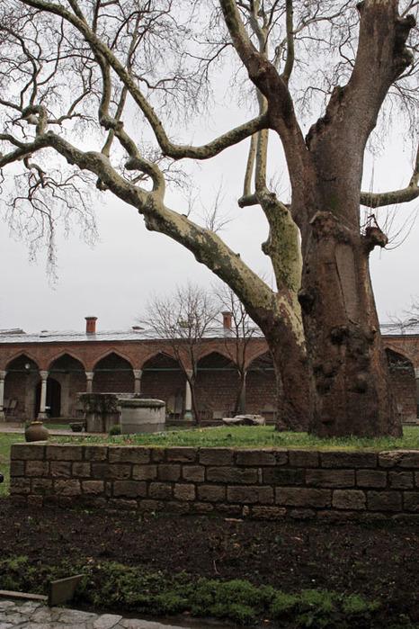 Дворец Топкапы (Topkapi Sarayi)-«турецкий Эрмитаж» 14051