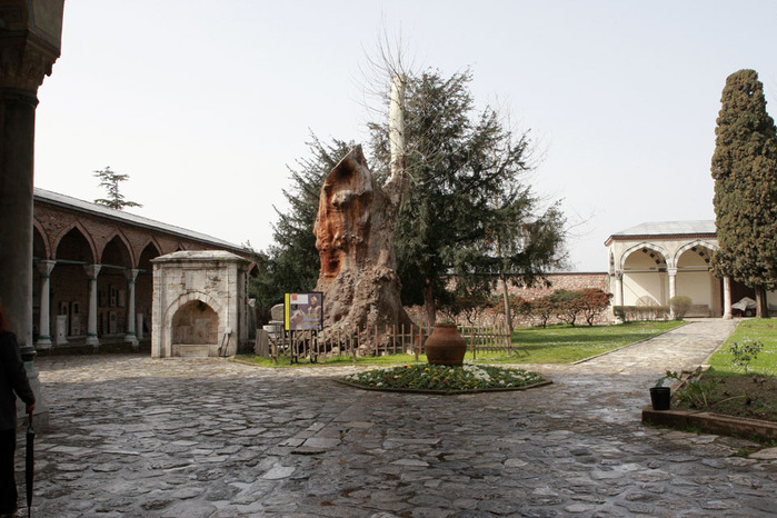 Дворец Топкапы (Topkapi Sarayi)-«турецкий Эрмитаж» 64181