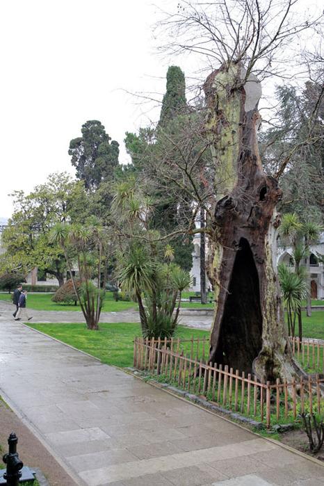 Дворец Топкапы (Topkapi Sarayi)-«турецкий Эрмитаж» 25861