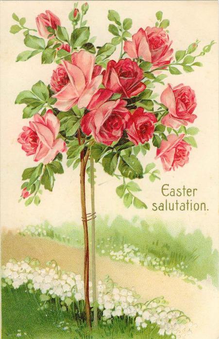 Красивые открытки старые открытки с цветами