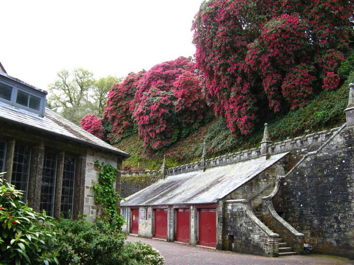 Замок Lanhydrock, графство Корнуолл. 22060