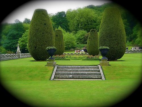 Замок Lanhydrock, графство Корнуолл. 79545