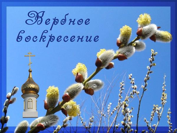 http://img1.liveinternet.ru/images/attach/c/1//57/53/57053203_094.jpg