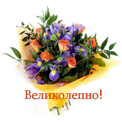 http://img1.liveinternet.ru/images/attach/c/1//57/547/57547218_55906331_55678317_velikolepno.jpg
