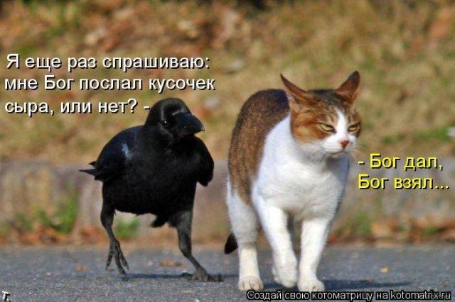 http://img1.liveinternet.ru/images/attach/c/1//57/555/57555439_0f1a8f7bac0319ee7155b32059241485.jpg