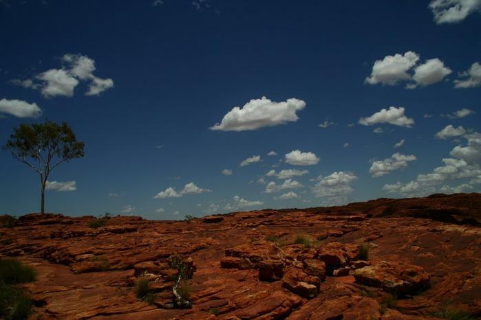 Королевский Каньон в Австралии 50497