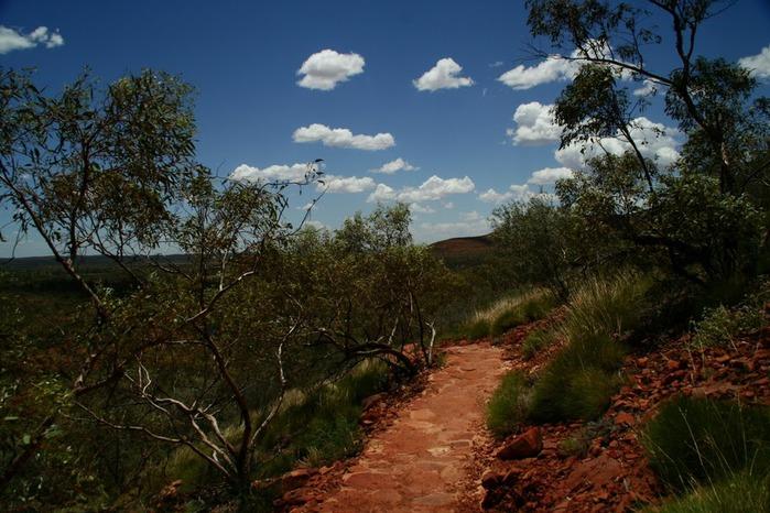 Королевский Каньон в Австралии 54270