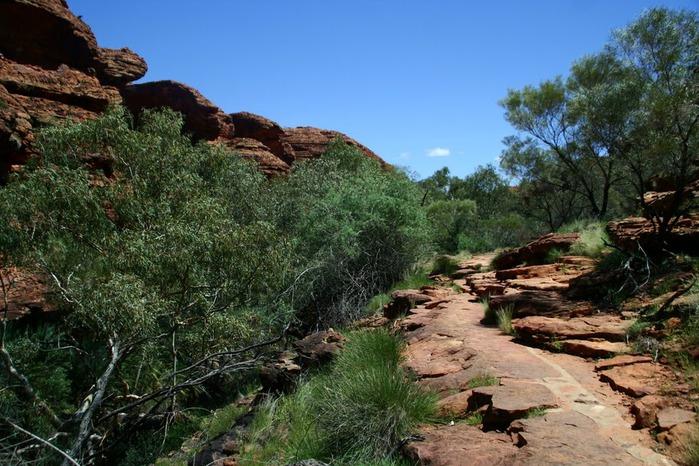Королевский Каньон в Австралии 86175
