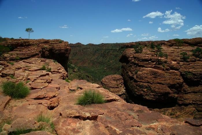 Королевский Каньон в Австралии 32329