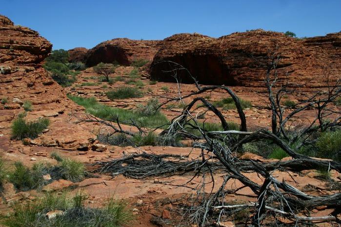 Королевский Каньон в Австралии 28007