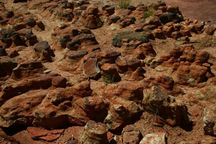 Королевский Каньон в Австралии 42128
