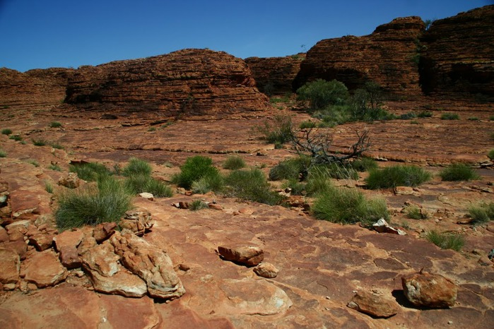 Королевский Каньон в Австралии 71901
