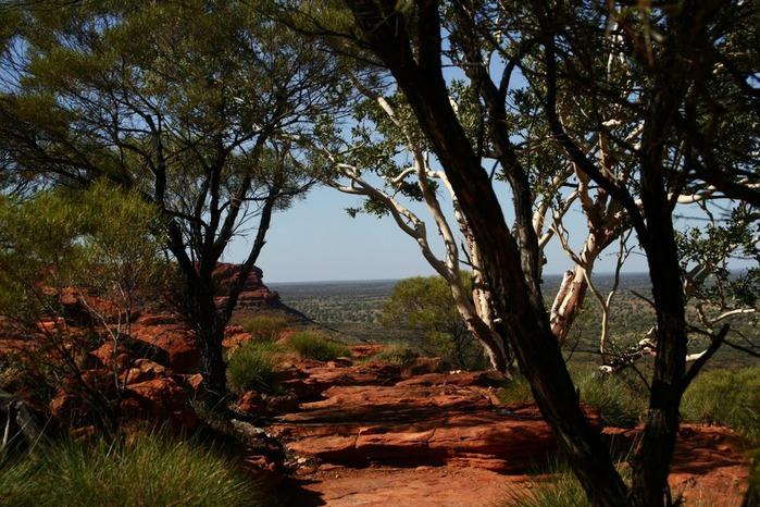 Королевский Каньон в Австралии 50990