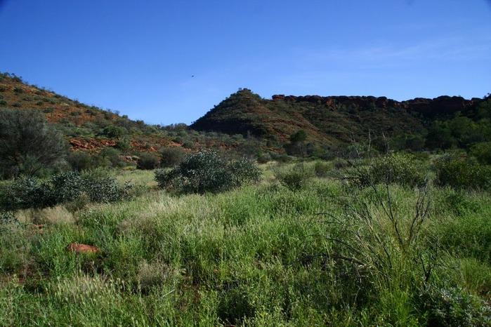 Королевский Каньон в Австралии 86389
