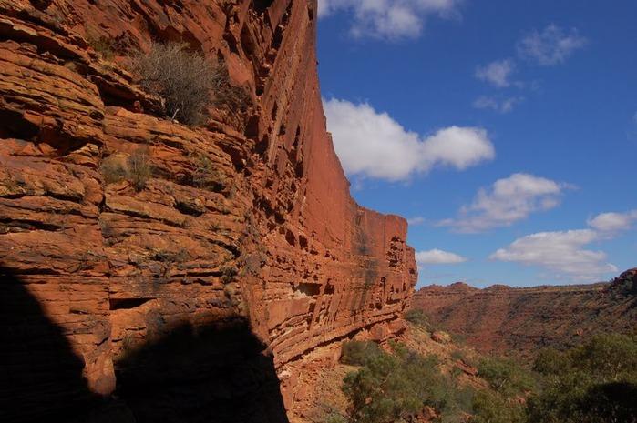 Королевский Каньон в Австралии 58906