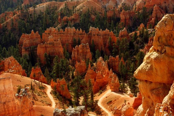 Национальный Парк Брайс Каньон (Bryce Canyon National Park, Utah) 23631