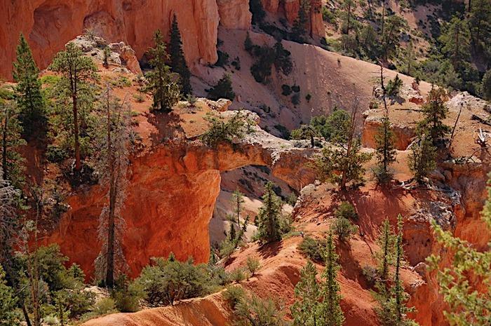 Национальный Парк Брайс Каньон (Bryce Canyon National Park, Utah) 84421