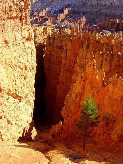 Национальный Парк Брайс Каньон (Bryce Canyon National Park, Utah) 92413