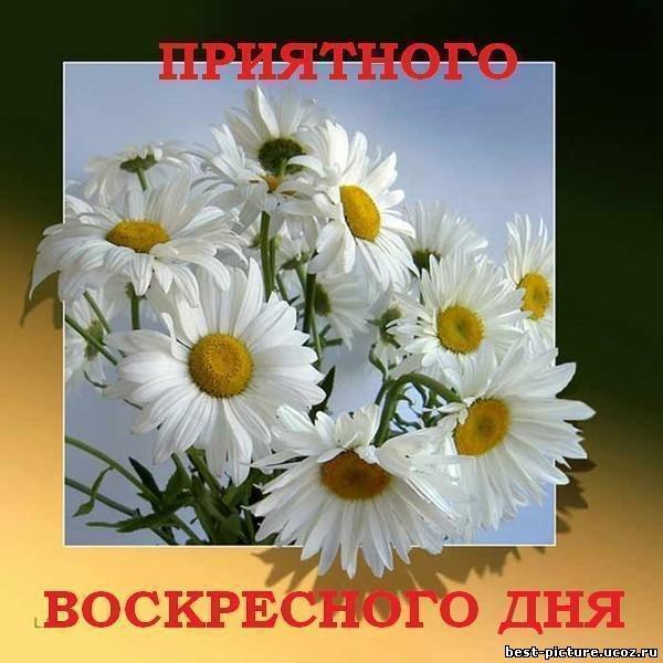 55807132_1200338 (600x600, 65 Kb)