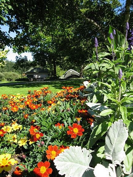 Сады Бучартов на острове Ванкувер. The Butchart Gardens. 13793