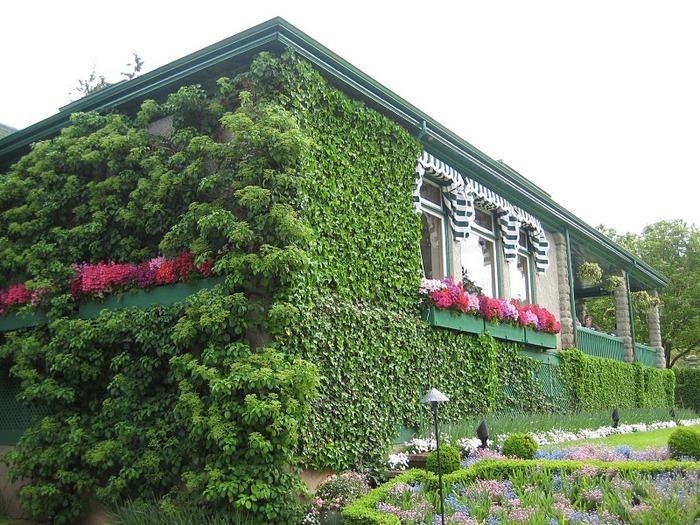 Сады Бучартов на острове Ванкувер. The Butchart Gardens. 63457
