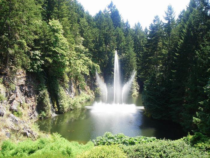 Сады Бучартов на острове Ванкувер. The Butchart Gardens. 51833