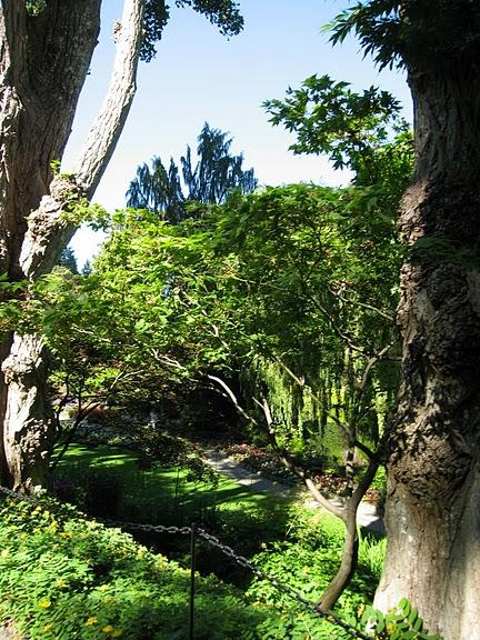 Сады Бучартов на острове Ванкувер. The Butchart Gardens. 62211