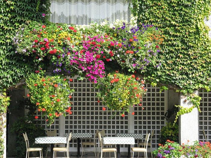Сады Бучартов на острове Ванкувер. The Butchart Gardens. 29903