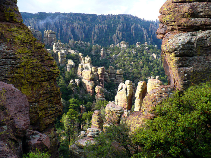 Аризона: Парк 'Chiricahua' - CHIRICAHUA NATIONAL MONUMENT 22821