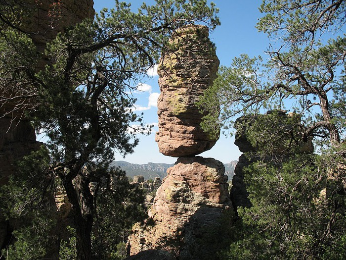 Аризона: Парк 'Chiricahua' - CHIRICAHUA NATIONAL MONUMENT 50771