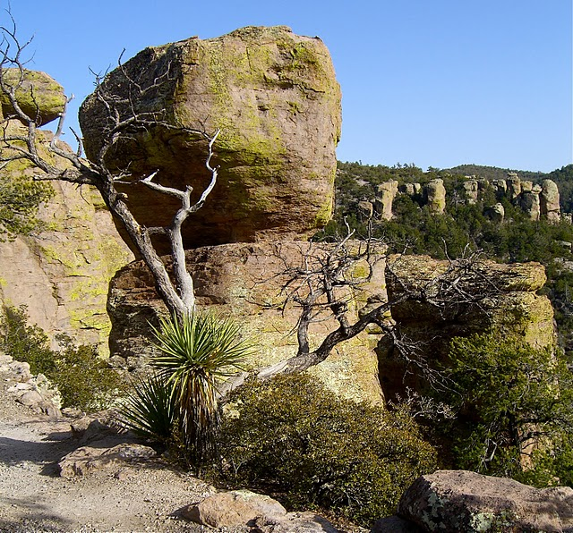 Аризона: Парк 'Chiricahua' - CHIRICAHUA NATIONAL MONUMENT 40079