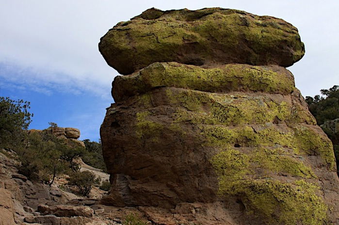 Аризона: Парк 'Chiricahua' - CHIRICAHUA NATIONAL MONUMENT 12422